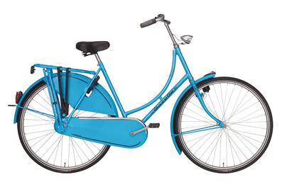 gazelle-basic-fahrrad-kaufen